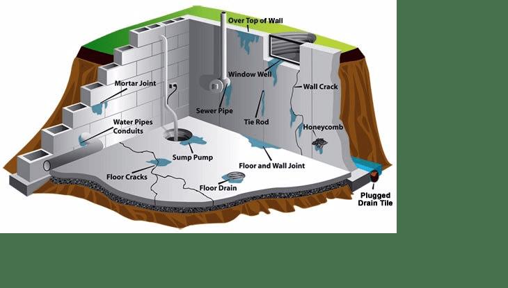 Basement Waterproofing Infographic